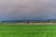 Agricoltore con il trattore che semina i raccolti al campo Fotografie Stock