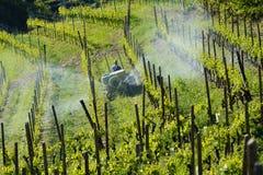 Agricoltore con il trattore fra le vigne Fotografia Stock