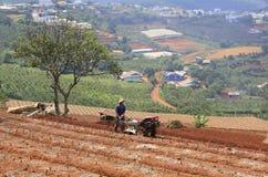 Agricoltore con il trattore sul campo Fotografia Stock Libera da Diritti