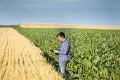 Agricoltore con la compressa nel campo Fotografia Stock Libera da Diritti