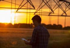 Agricoltore con la compressa nel campo al tramonto Immagini Stock Libere da Diritti