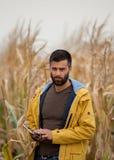 Agricoltore con la compressa nel campo di grano Immagine Stock Libera da Diritti