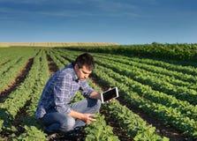 Agricoltore con la compressa nel giacimento della soia Fotografia Stock