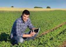 Agricoltore con la compressa nel giacimento della soia Immagine Stock Libera da Diritti