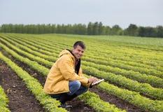 Agricoltore con la compressa nel giacimento della soia in primavera Fotografia Stock