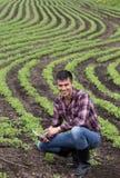 Agricoltore con la compressa nel giacimento della soia in primavera Fotografia Stock Libera da Diritti