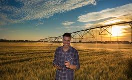 Agricoltore con la compressa nel giacimento di grano Fotografie Stock Libere da Diritti