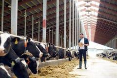 Agricoltore con la lavagna per appunti e le mucche in stalla sull'azienda agricola Immagine Stock