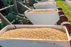Agricoltore con la semina del trattore - la soia della semina pota alla f agricola Immagine Stock Libera da Diritti