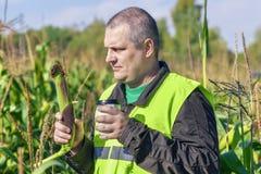 Agricoltore con la tazza di caffè ed il cereale sul campo Immagine Stock Libera da Diritti
