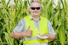 Agricoltore con soldi che mostrano pollice su sul campo di grano Fotografia Stock