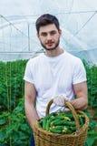 Agricoltore con un raccolto completo del canestro Fotografie Stock