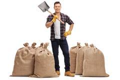 Agricoltore con una pala che sta fra i sacchi della tela da imballaggio Immagini Stock