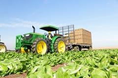 Agricoltore del driver del trattore fotografie stock libere da diritti