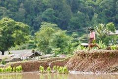 Agricoltore del Myanmar Fotografie Stock