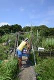 Agricoltore del paese del Giappone Immagine Stock Libera da Diritti