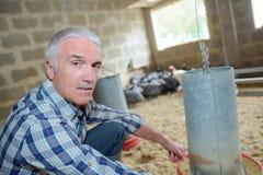 Agricoltore del pollame nella casa della penna Immagini Stock Libere da Diritti