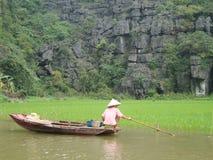 Agricoltore del riso Fotografia Stock Libera da Diritti