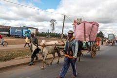 Agricoltore del riso in città Immagine Stock Libera da Diritti