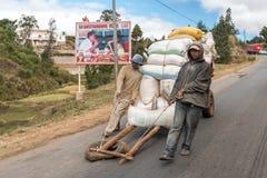 Agricoltore del riso in città Fotografia Stock