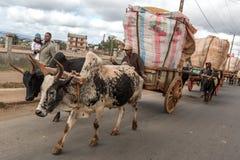 Agricoltore del riso in città Fotografia Stock Libera da Diritti