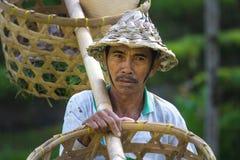 Agricoltore del riso di balinese con i canestri Fotografia Stock
