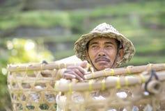 Agricoltore del riso di balinese sul giacimento del riso Fotografie Stock Libere da Diritti