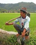 Agricoltore del riso nella valle di Harau in Sumatra ad ovest, Indonesia Fotografie Stock Libere da Diritti