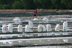 Agricoltore del sale Immagine Stock