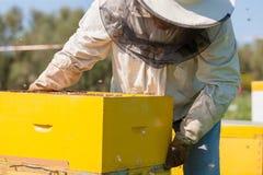 Agricoltore dell'ape con il fumatore su un alveare Fotografia Stock Libera da Diritti