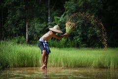 Agricoltore dell'Asia Fotografie Stock