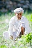 Agricoltore dell'Oman del riso Fotografia Stock