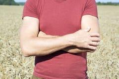 Agricoltore dell'uomo nel giacimento della segale Immagini Stock