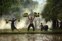 Agricoltore della famiglia Fotografia Stock Libera da Diritti