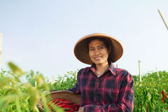 Agricoltore della giovane donna Immagine Stock Libera da Diritti