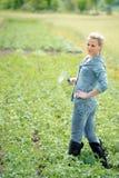Agricoltore della giovane donna che lavora al campo di estate con le patate crescenti Fotografia Stock Libera da Diritti