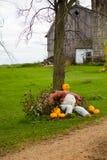 Agricoltore della Jack-O-lanterna Immagini Stock