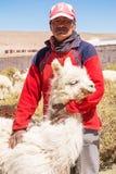 Agricoltore della lama in Argentina Immagini Stock Libere da Diritti
