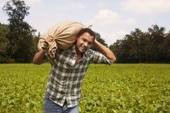 Agricoltore della patata alla piantagione della patata Fotografia Stock