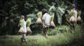 Agricoltore della ragazza e del ragazzino Fotografia Stock Libera da Diritti