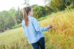 Agricoltore delle donne nel giacimento di grano maturo Fotografia Stock Libera da Diritti
