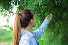 Agricoltore delle donne nel riso del campo Immagine Stock Libera da Diritti