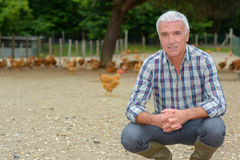 Agricoltore dentro il funzionamento del pollo Immagine Stock Libera da Diritti
