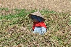 Agricoltore di Bali Fotografie Stock
