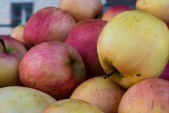 Agricoltore di giorno rosso Market Texture di giallo delle mele del mazzo Fotografia Stock