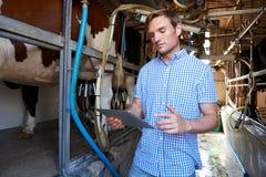 Agricoltore di latteria Using Digital Tablet nella mungitura sparsa Fotografia Stock