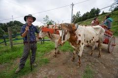 Agricoltore di Tico in Costa Rica Fotografia Stock Libera da Diritti