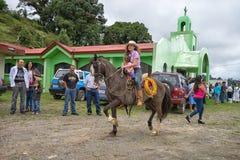 Agricoltore di Tico sulla parte posteriore del cavallo Immagini Stock