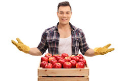 Agricoltore dietro una cassa riempita di mele Immagini Stock Libere da Diritti