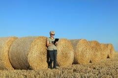 Agricoltore e balla di paglia nel campo Immagine Stock